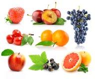 新鲜水果被设置的绿色叶子 免版税图库摄影