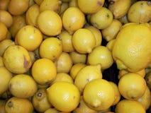 新鲜水果黄色和金子颜色柠檬果子是有用的对许多的健康维生素,汁液, 免版税库存图片