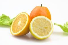 新鲜水果 库存照片