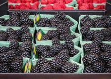 新鲜清洗被分类的黑莓待售在地方农厂市场上 免版税库存图片