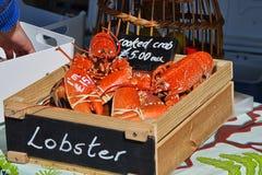 新鲜煮熟的龙虾待售 免版税库存照片