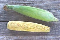 新鲜玉米棒的玉米 库存照片
