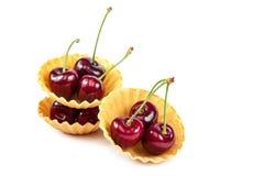 新鲜的一个甜樱桃果子 免版税库存照片