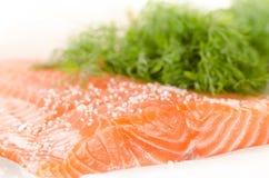 新鲜的三文鱼内圆角用在烘烤纸张的香料 库存照片
