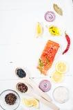 新鲜的三文鱼内圆角的可口部分用芳香草本、香料和菜-健康食物,饮食或者烹调 图库摄影