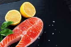 新鲜的三文鱼用柠檬和蓬蒿 图库摄影