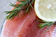 新鲜的三文鱼和柠檬 库存照片