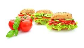 新鲜的三明治蔬菜 免版税图库摄影