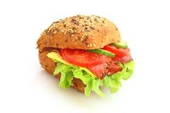 新鲜的三明治 库存图片