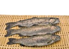 新鲜的三鳟鱼 库存图片