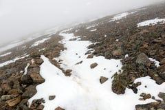 新鲜的下落的雪在落矶山 免版税图库摄影
