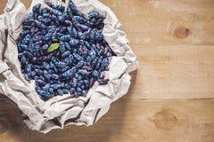 新鲜的与叶子的忍冬属植物蓝色莓果在一木backgr 库存照片