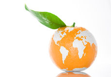 新鲜的世界 免版税库存照片