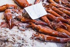 新鲜的乌贼海鲜待售在一个市场上在巴勒莫,西西里岛, Ita 库存图片
