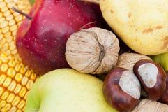 新鲜的五颜六色的秋天水果和蔬菜细节 库存图片