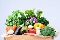 新鲜的五颜六色的菜品种  免版税图库摄影