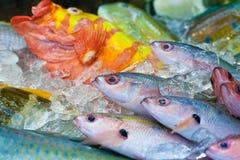 新鲜的五颜六色的鱼在市场,日本上 免版税库存照片