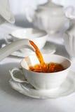 新鲜的倾吐的茶 免版税库存照片