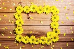 新鲜的做框架的春天花和瓣在土气木头 免版税库存照片