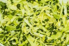 新鲜的健康沙拉新芽,葱 库存图片