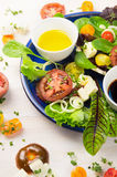 新鲜的健康沙拉用蕃茄、草本、希脂乳和油 免版税图库摄影