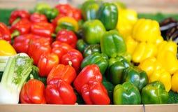 新鲜的健康生物红色,绿色和黄色辣椒粉 免版税库存照片