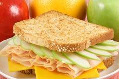 新鲜的健康野餐三明治 免版税库存照片