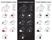 新鲜的兔子削减零件图-信息grapic 图库摄影