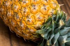 新鲜的全部的菠萝 免版税库存图片
