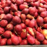 新鲜的农厂采撷红色梨 库存照片