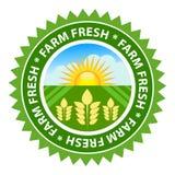 新鲜的农场 免版税库存照片