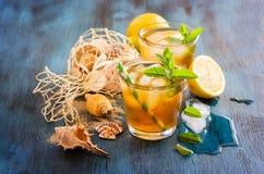 新鲜的冷的被冰的茶用薄菏、冰、柠檬和海壳, refr 库存照片