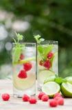 新鲜的冷的饮料水冻冰块求薄荷石灰莓的立方 免版税库存图片