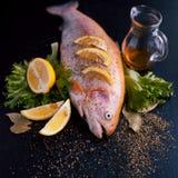 新鲜的准备在黑桌上的鱼宴的鳟鱼和成份,用香料和柠檬,顶视图 库存图片