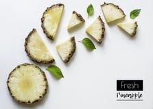 新鲜的切的菠萝创造性的布局在白色背景的与文本的空间 免版税库存图片