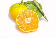 新鲜的半桔子 免版税库存图片