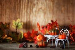 新鲜的南瓜在椅子的内部木室 免版税图库摄影