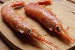 新鲜的原始的虾 免版税库存图片