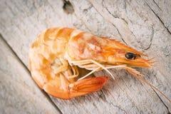 新鲜的原始的虾 库存照片