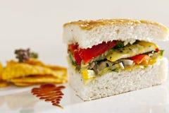 新鲜的可口乳酪panini。 图库摄影
