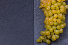 新鲜的可口和健康有机康科德紫葡萄 免版税图库摄影