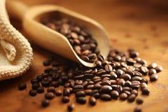 新鲜的咖啡豆 免版税图库摄影
