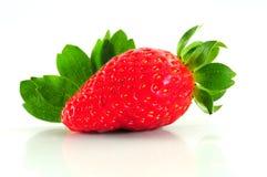 新鲜的唯一草莓 库存照片
