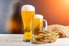新鲜的啤酒在反对黑暗的背景的两块玻璃中在光芒  图库摄影