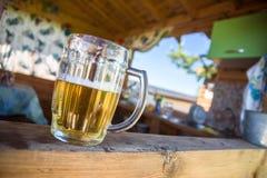 新鲜的啤酒杯 库存照片