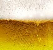 新鲜的啤酒 库存图片