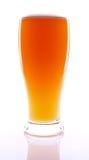 新鲜的啤酒 免版税图库摄影