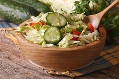 新鲜的圆白菜和黄瓜沙拉在碗 水平 免版税库存图片
