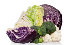 新鲜的圆白菜 免版税图库摄影