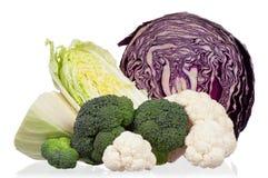 新鲜的圆白菜 库存图片